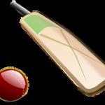 cricket-bats-development
