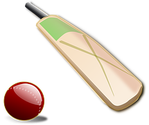 cricket-bats-development